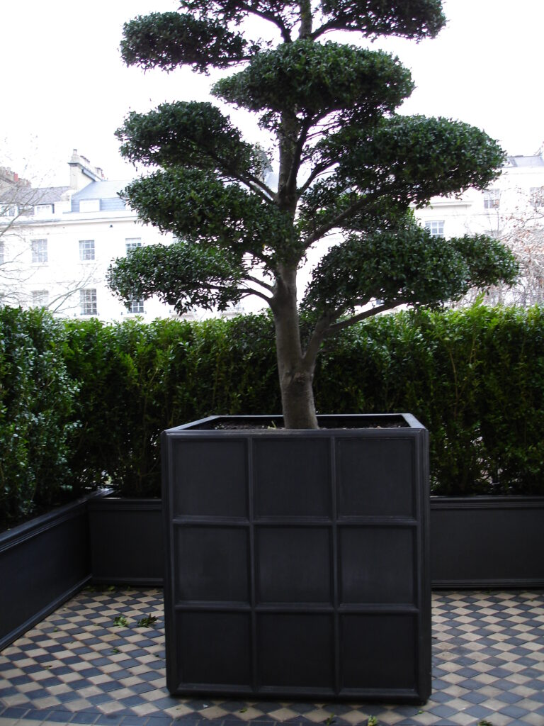 Downing Street Cube Planter Lifestyle1