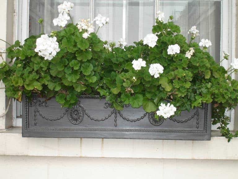 Adam Window Box Fibreglass Planter Alt