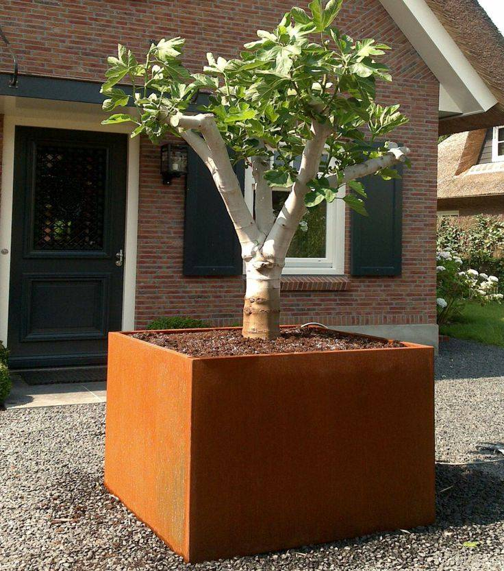 andes low cube adezz corten steel planters. Black Bedroom Furniture Sets. Home Design Ideas