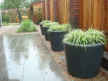 Ready Planted Containers