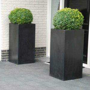 Buxus Tower | Adezz Fibreglass Planter
