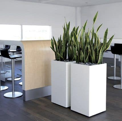 Buxus Tower Adezz Fibreglass Planter Alt 1