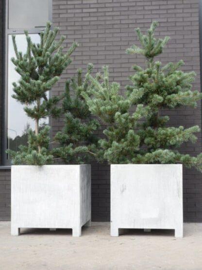 Vadim Cube Adezz Galvanized Planter Alt 1