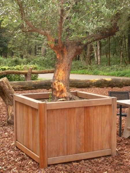 Valencia Cube Adezz Hardwood Planter Alt 2