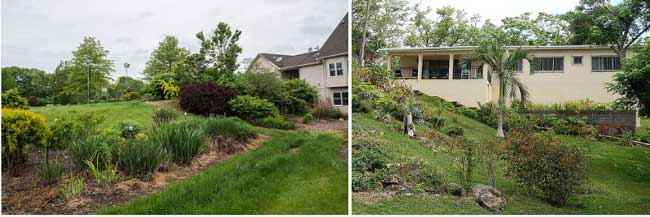 Sloping garden ideas - successful landscaping design tips ... on Sloping Gardens Design Ideas id=39149