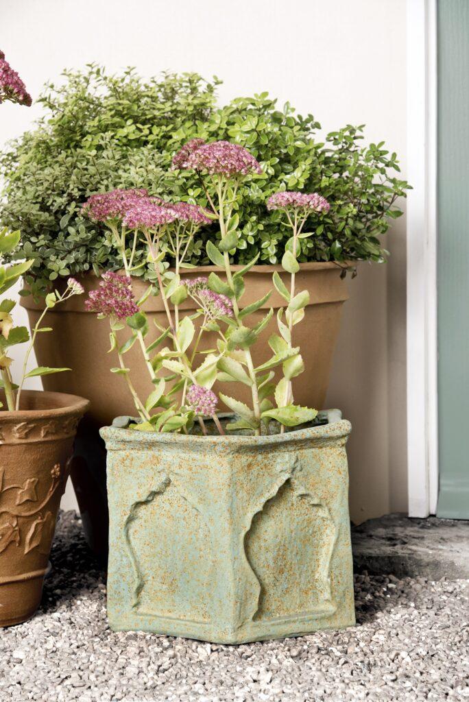 Arabesque Fibreglass Planter Bronzage Lifestyle1