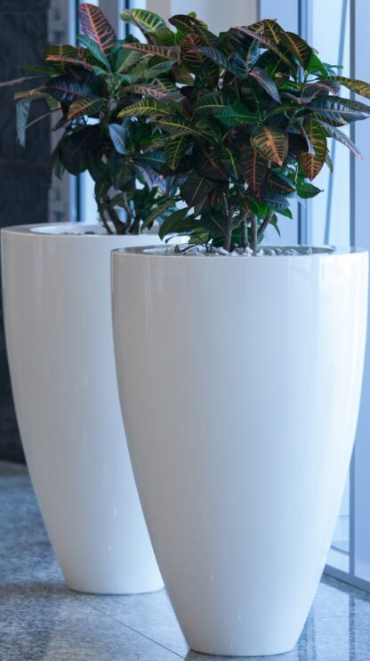 Fibreglass Glossy Canna Planter by Adezz Lifestyle1