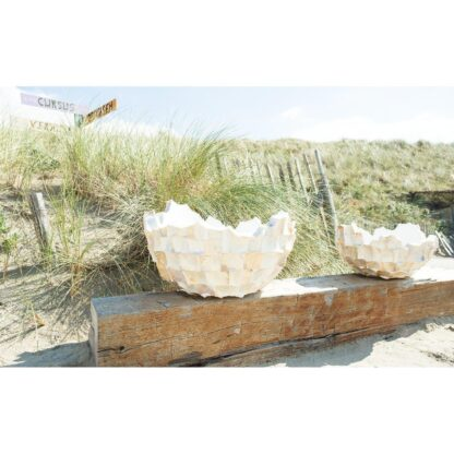 Shell Asymmetric Bowl Planter White 60x33cm Lifestyle2