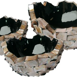Shell Asymmetric Bowl Planters 3 Sizes