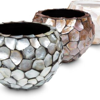 Shell Bowl Planter 3 Colours