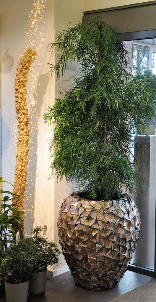 Shell Vase Planter Brown 74x80cm Lifestyle3