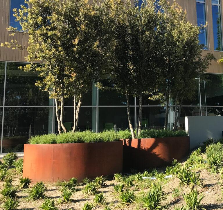Corten Steel Round Vegetable Planter by Adezz Lifestyle1