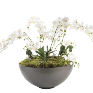 Bowl Planter5