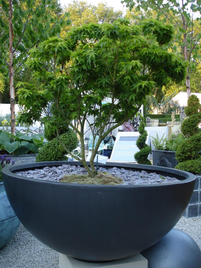 Bowl Planter7