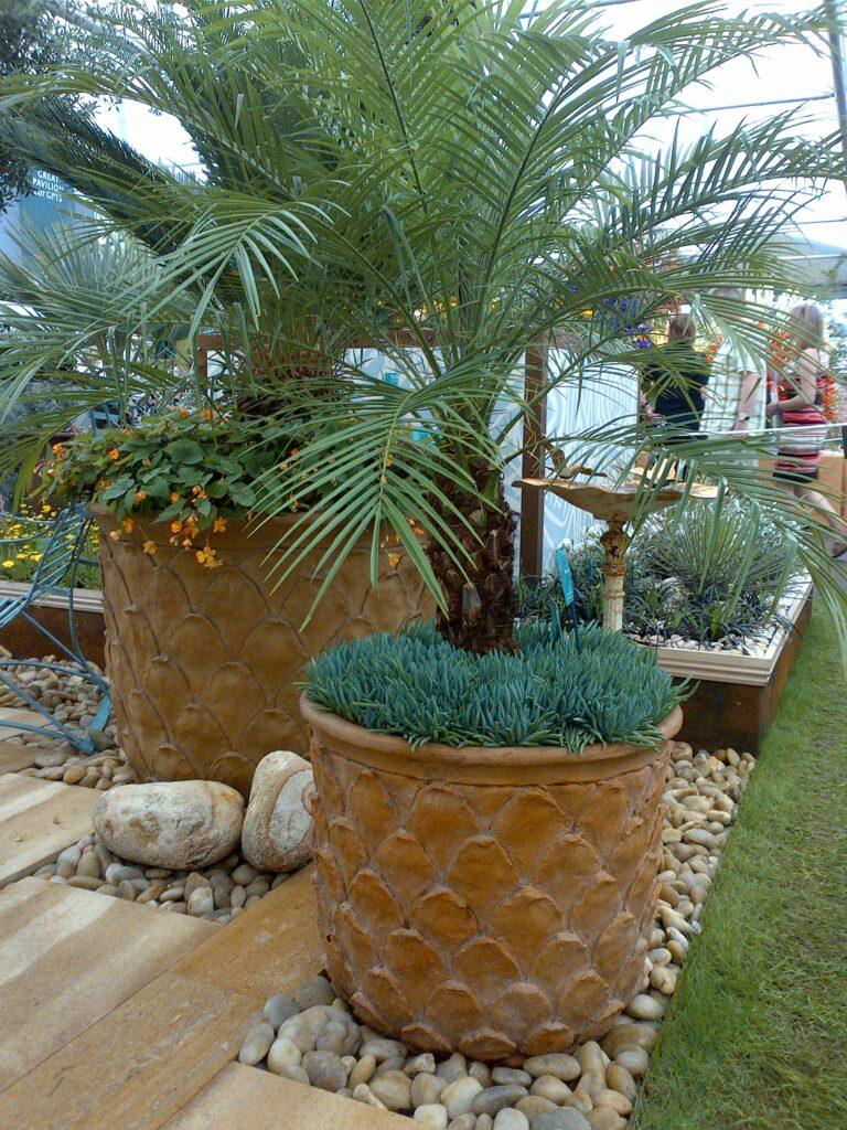 Pineapple Pot in Terracotta Lifestyle3